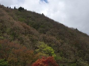 Photo_080_2